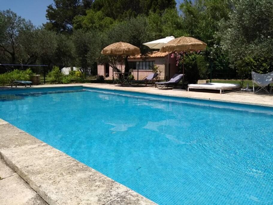 La piscine est doté de plusieurs bains de soleil, parasols et est clôturée pour plus de sécurité.  Un barbecue est mis à disposition des vacanciers ainsi qu'une table de pin-pong.