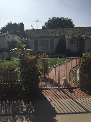 The Orange Estates cute house