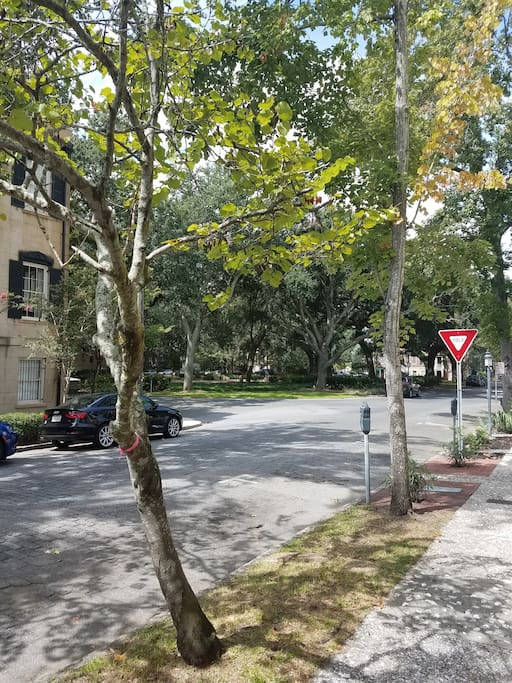 Street view from historic home and Chatham Square.