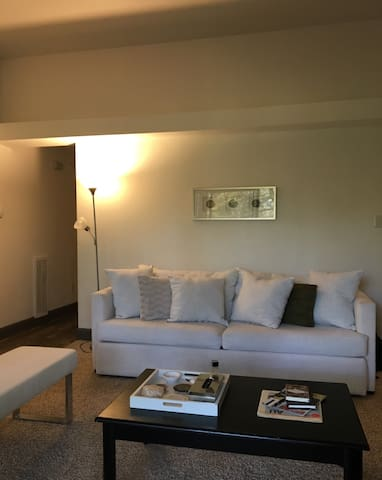 Clear Lake Houston Apartment (7 minutes from NASA)