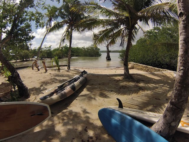 water sports kayak and paddle boards inc Free