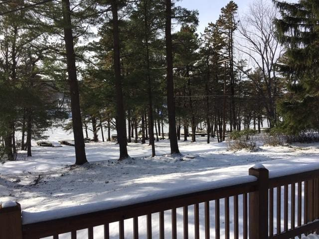 Winter view of the lake from the deck