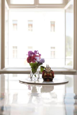 Sweet oldtown flat In the heart of Salzburg