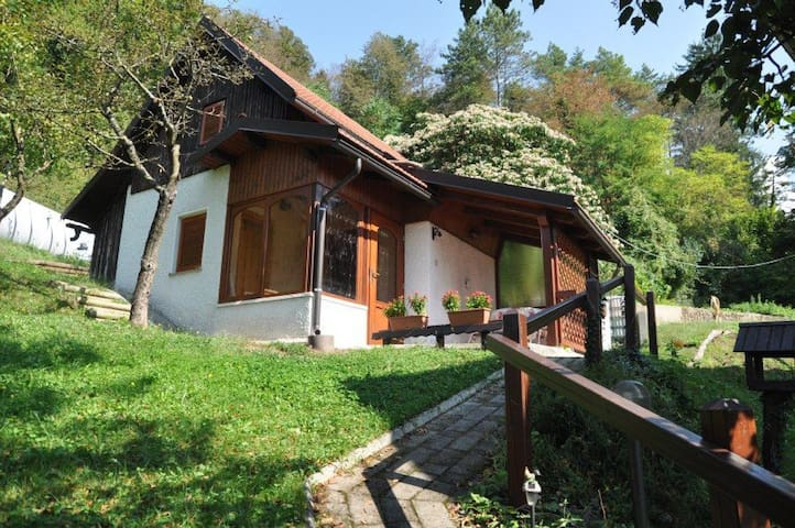 Beautiful Holiday house in Tolmin