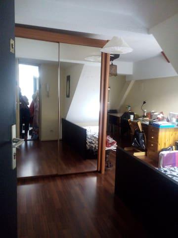 studio strasbourg centre ville appartements louer. Black Bedroom Furniture Sets. Home Design Ideas