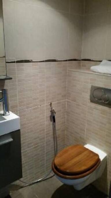 Toilette +lave mains