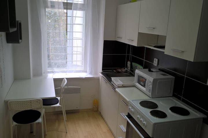 Whole equipped apartment in a CITY CENTER of Brno - Brno - Apartamento