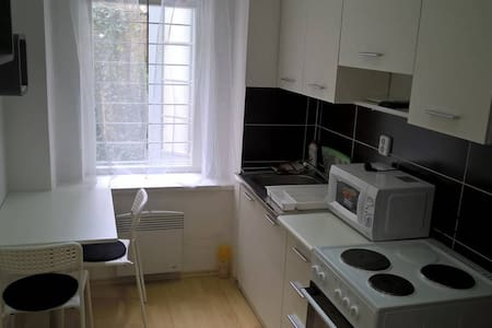 Whole equipped apartment in a CITY CENTER of Brno - Brno - Daire