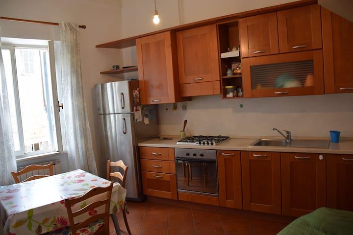 Centralissimo - Urbino - Byt