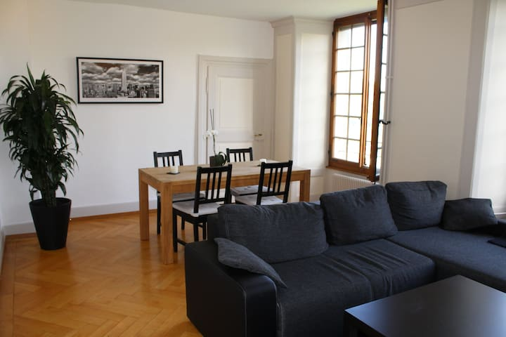 Room in lovely old appartment - Fribourg - Flat