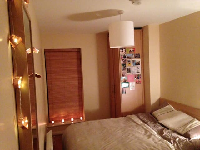 Cosy double bedroom in Dublin - Fairview - Huoneisto