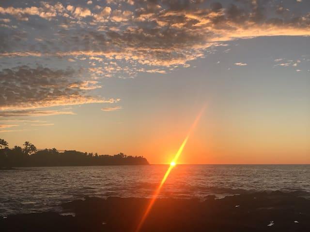 Puako Reef — Live Like a Local