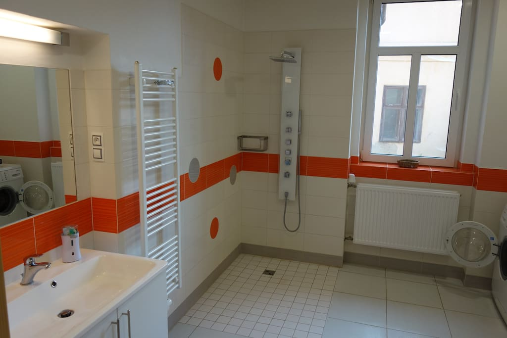 Newly reconstructed spacious bathroom