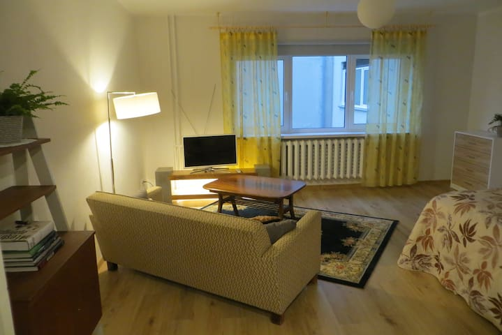 Tormi 6 studio apartment