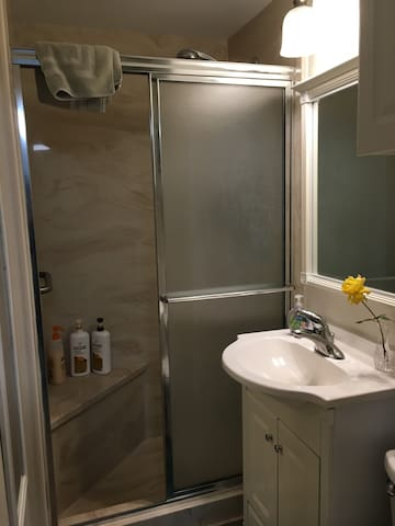 The other guest bath  room