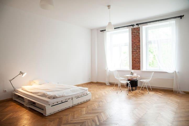Sunny, white, minimalist studio - Łódź - Appartamento