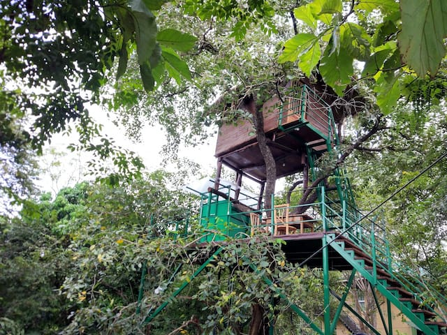 Wildescape Tree House Polonnaruwa