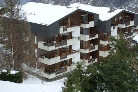 Winter Sports- / Holiday-Apartment-Swiss Alps. - Riddes - Apartamento