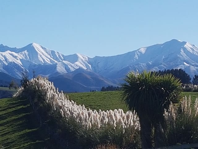 A True NZ Experience ...breathtaking views. Room 1