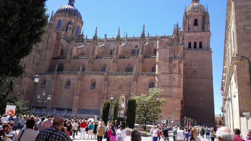 SALAMANCA CIUDAD MONUMENTAL - Salamanca - Dům