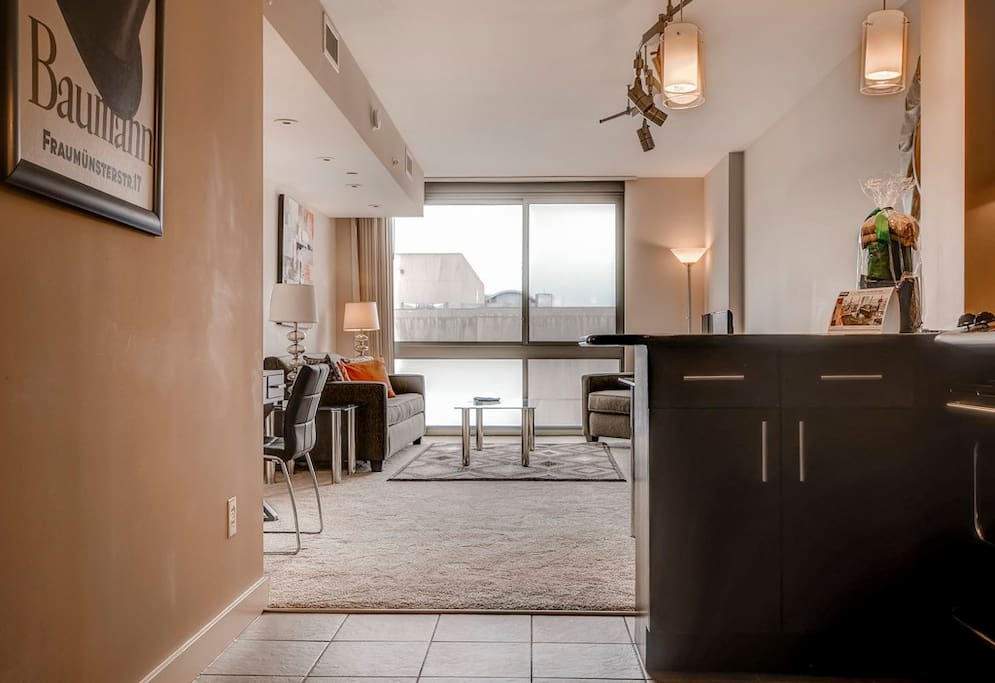 luxury 1 bedroom apartment in newseum apartments for rent in