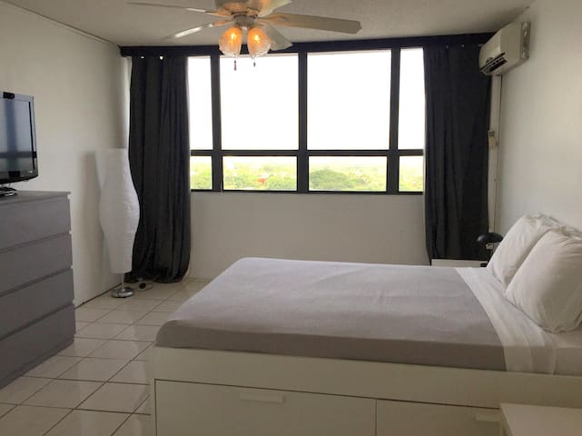 Beautiful 1 BR Suite with a View! - Guaynabo - Pis