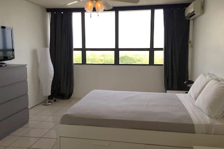 Beautiful 1 BR Suite with a View! - Guaynabo - Lakás