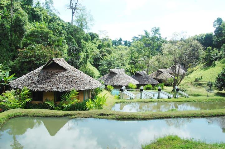 The Natural Healing Spa Retreat - Chiang Mai - Villa