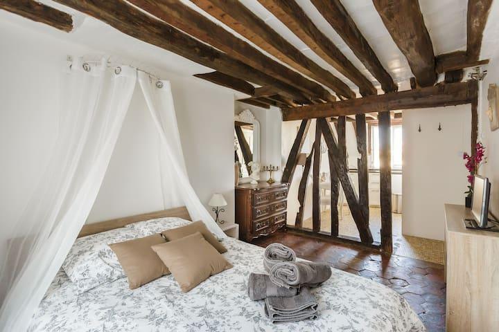 Romantic flat in Paris Le Marais - Paříž - Byt