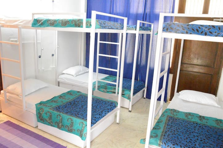 Bed In A Sharing 6 Bedded  Mixed Dorm