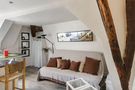PARIS VERY CENTRAL ''LE MARAIS'' studio - Paris - Apartment