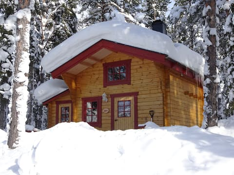 urige Hütte im Wald (Järv)