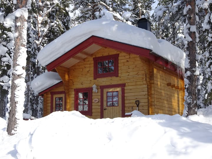 rustic cottage in the forest (Järv)