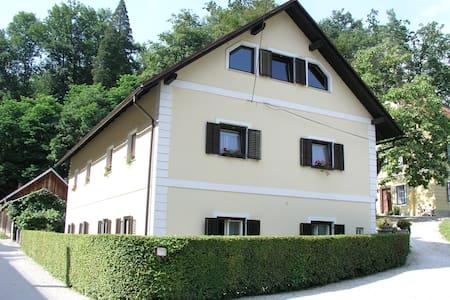 Apartma Ungar - Zore (Apartma)