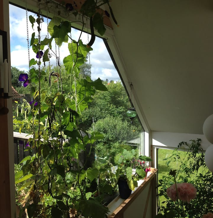 Grøn villalejlighed med terrasse
