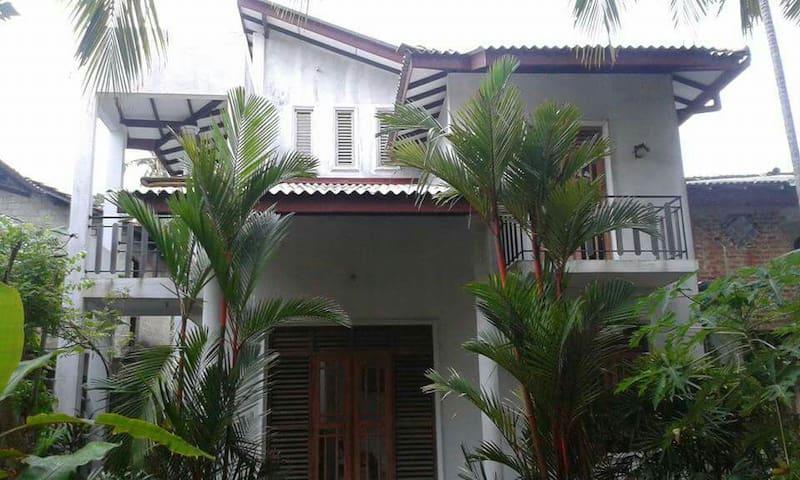 Villa palm garden