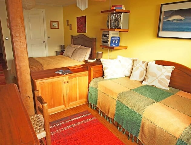 Lakefront Apartment - Puerto Varas