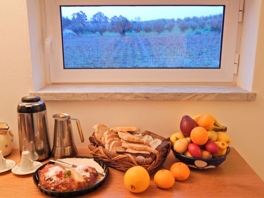 Breakfast with view to the vineyard