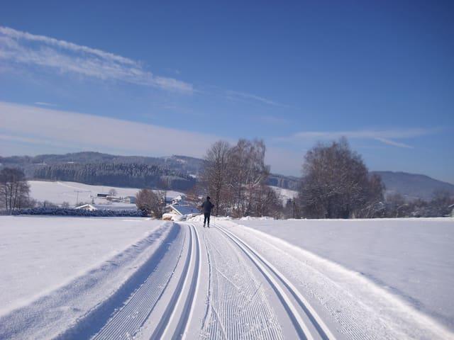 Desfrute da nossa natureza ! - Langdorf
