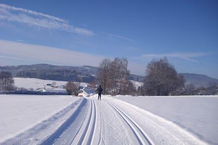Ruhiger Ort mit Naturgenuss pur - Langdorf