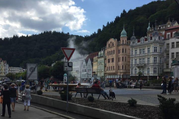 Просторная квартира в центре старого города - Karlovy Vary - Lägenhet