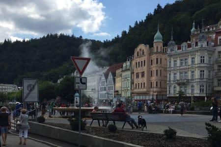 Просторная квартира в центре старого города - Karlovy Vary - Wohnung