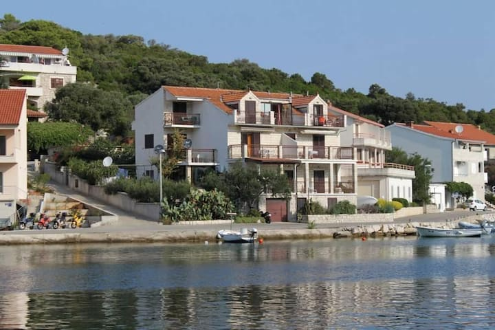 One bedroom apartment with terrace and sea view Pasadur, Lastovo (A-996-b) - Pasadur - Apartamento