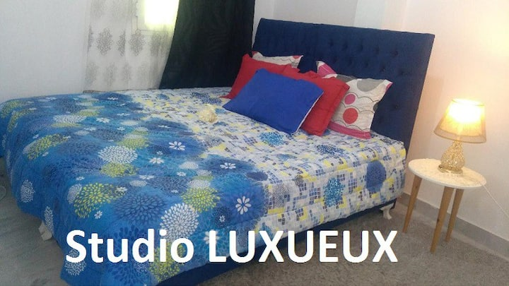 Luxurious furnished studio in Mourouj1 (Tunisia)