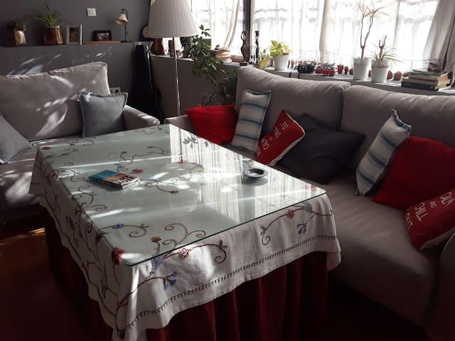 Apartamento en paseo de la Ribera sin Cocina
