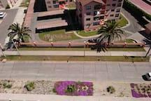 calle donde se ubica el edificio (Los Perales Poniente).