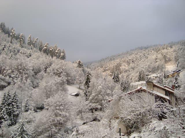 Schöne Ferienwohnung in der Nähe von Heidelberg