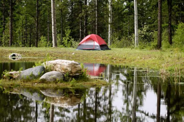 Campground: Sweetgrass