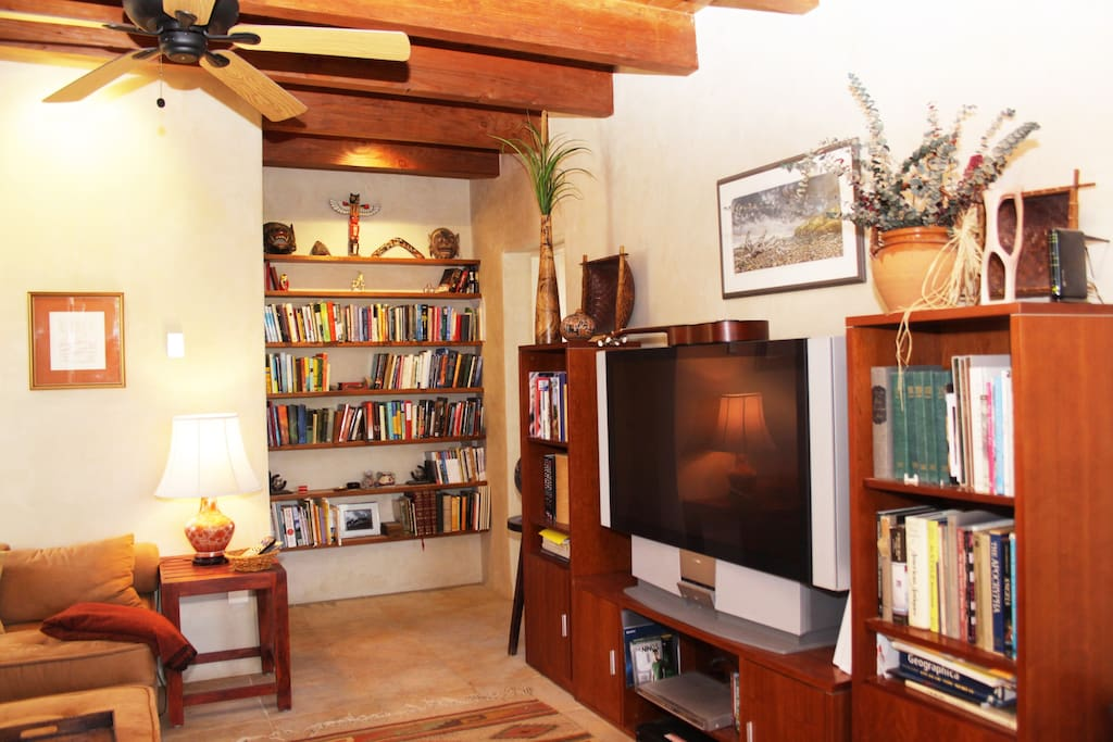 TV room/library in guest wing