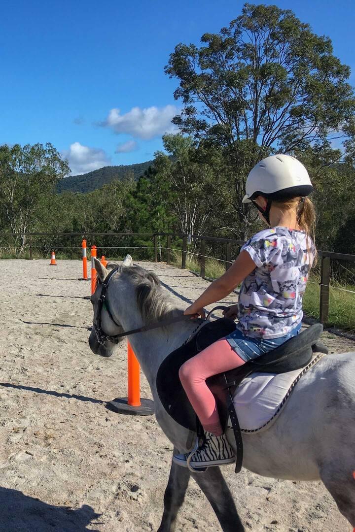 Amazing Horse Rides